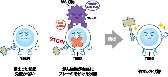 免疫療法の仕組み